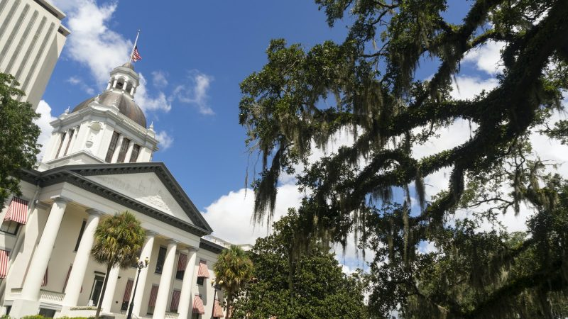 The Florida Statehouse with Blue Skies